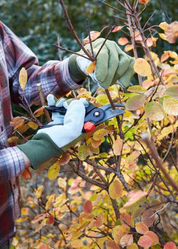 Cook portable warehouses blog fall home garden - Fall gardening tasks ...