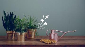 lead-nurturing-et-marketing-automation