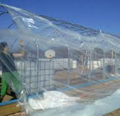 Greenhouse_plastic-1.jpg