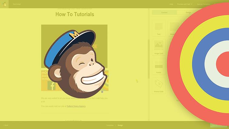 How To Create an Email Campaign on Mailchimp