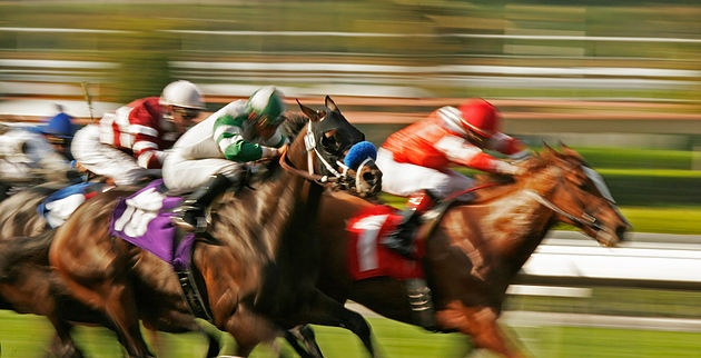 Thrilling growth for Racing Bets: Ready, Set, Gallop!