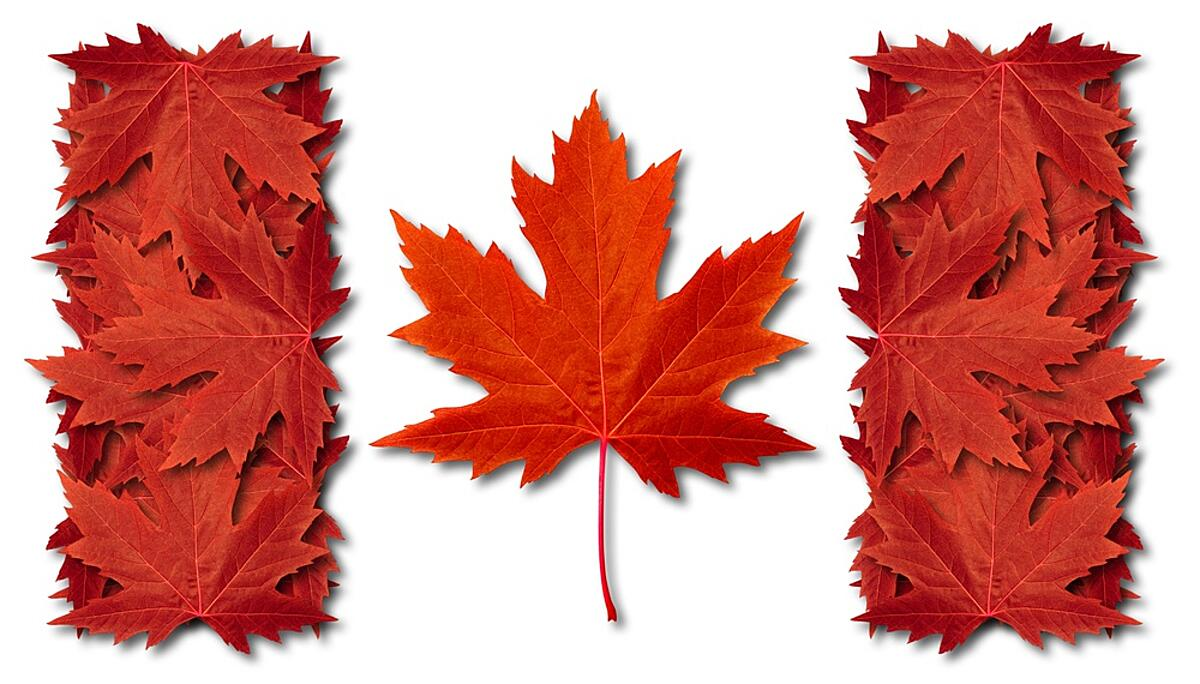 Canadian Flag in Maple Leafs