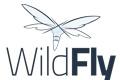 WildFly