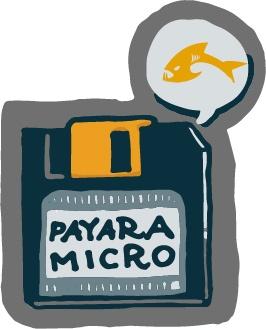 Payara Micro Floppy Disk