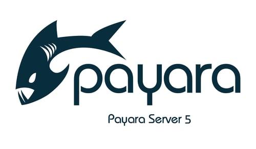 Payara-Server-5