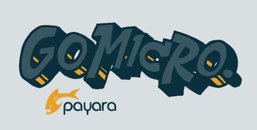 Payara_Micro-1-3