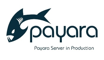 small-Payara-Server-in-Production-2