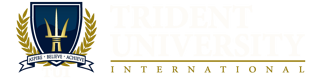 Trident_web_bar-white_808px.png