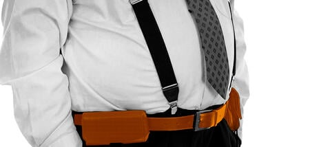 Machine Learning: A Belt and Suspenders Approach