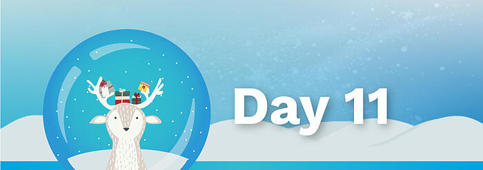 12Days_BlogBanners_Day11