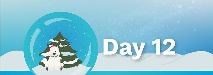 12Days_BlogBanners_Day12