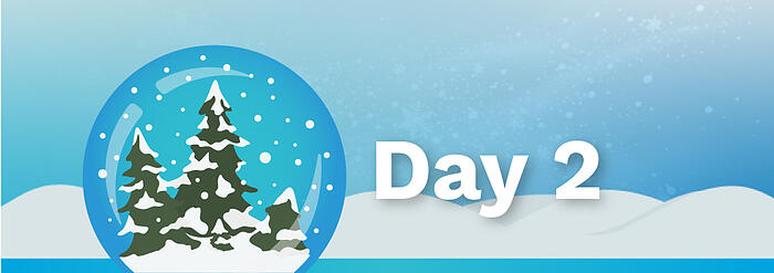 12Days_BlogBanners_Day2