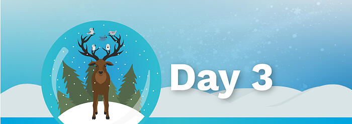 12Days_BlogBanners_Day3