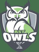 DSST18001-Owls_WhiteFill