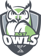 DSST18001-Owls_WhiteFill