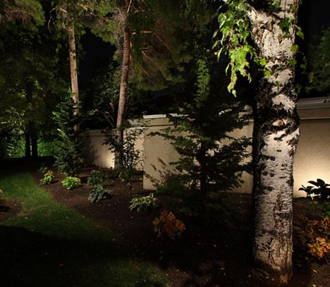 Down-up-wash-lighting--tree-lighting-accents-outdoor-lighting