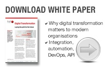 CTA_hs_white_digital_transformation_product_leaflet.jpg