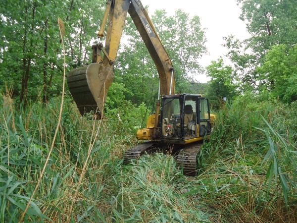 Michigan pond maintenance service fenton michigan genesee for Pond maintenance