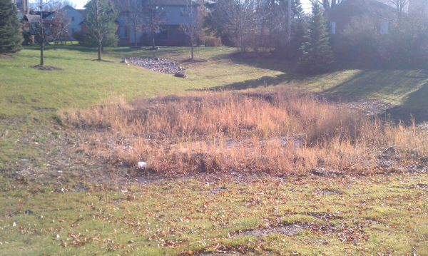 Ann Arbor Michigan Washtenaw Retention Pond Maintenance