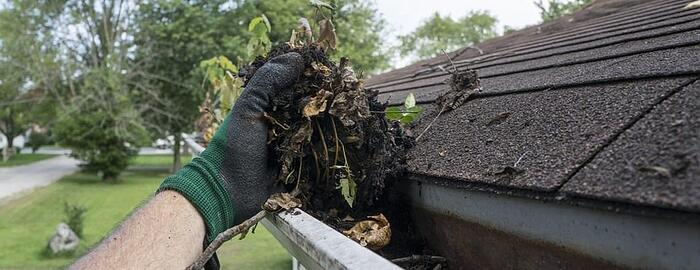 Why It's Important to Have Your Gutters Cleaned