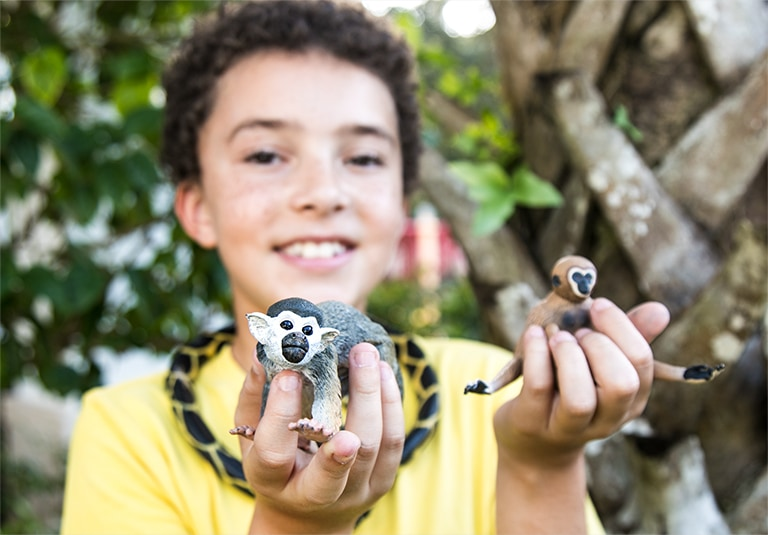 Boy playing with lemur toys outside