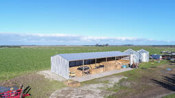 Open bays allow for sunlight and airflow in a shed
