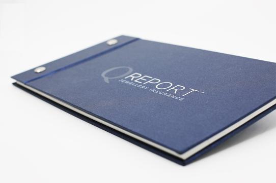 Image result for qreport logo