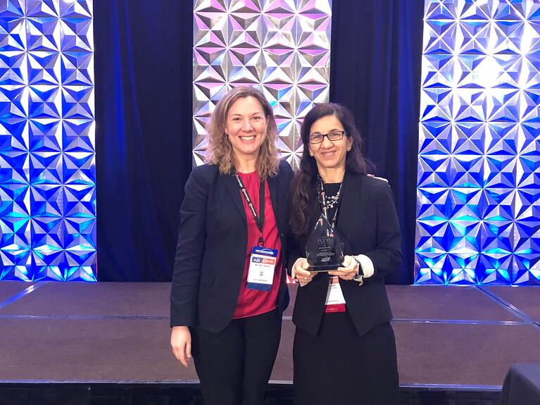 UES Wins 2018 FLEXI Award with GE Global Research, Teams