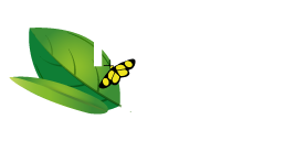 Huasteca Secreta