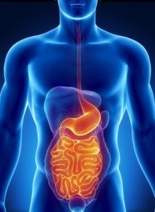 what is leaky gut