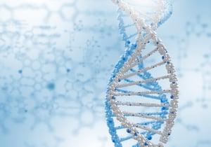 fut2 gene and bifido probiotics