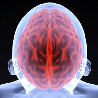 high sugar and brain
