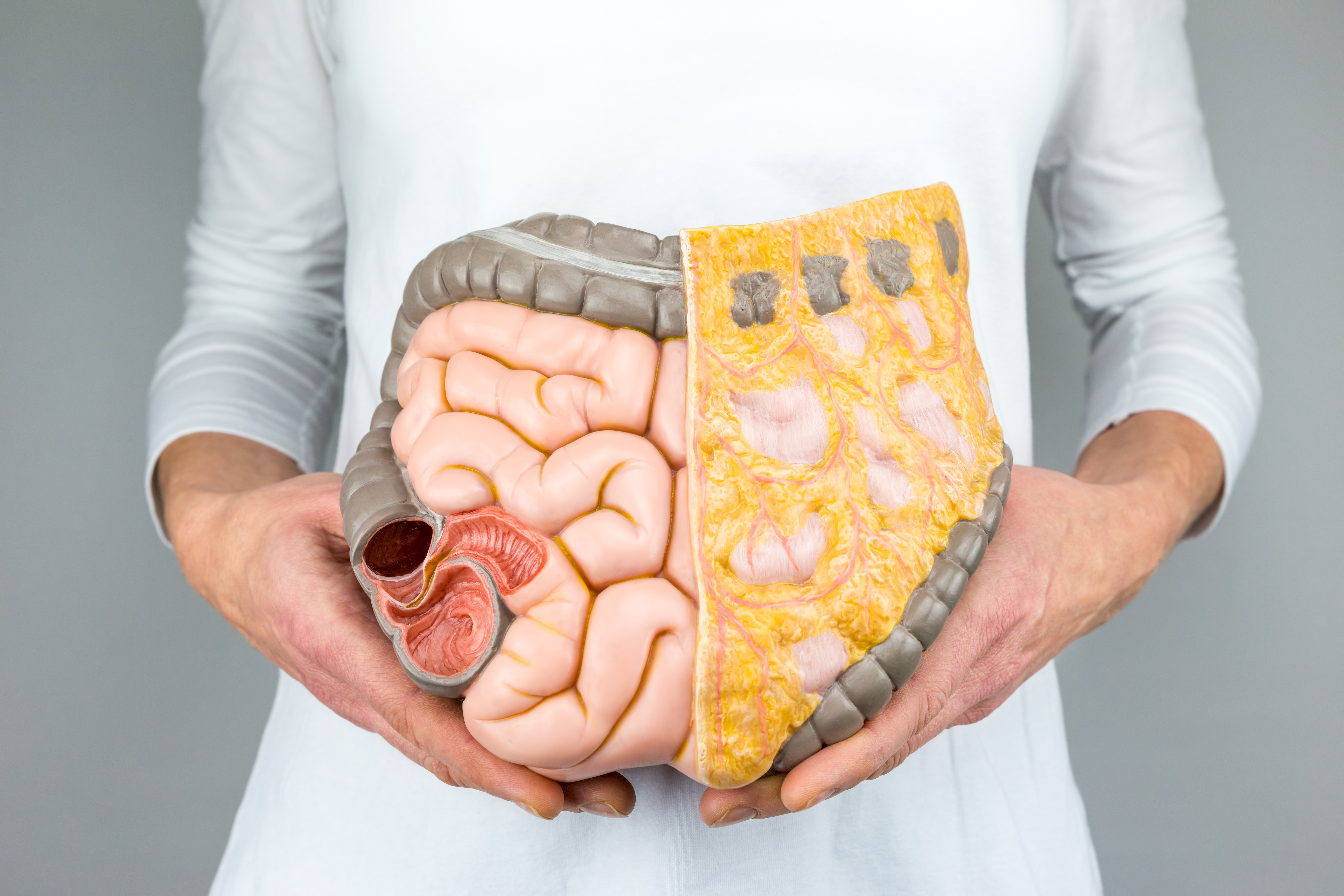 heal leaky gut