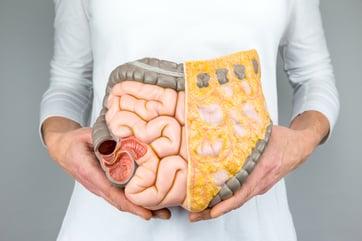 intestinal health