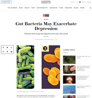 gut bacteria and depression