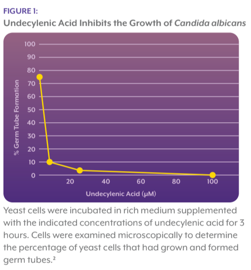 undecylenic_acid_inhibits_the_growth_of_candida