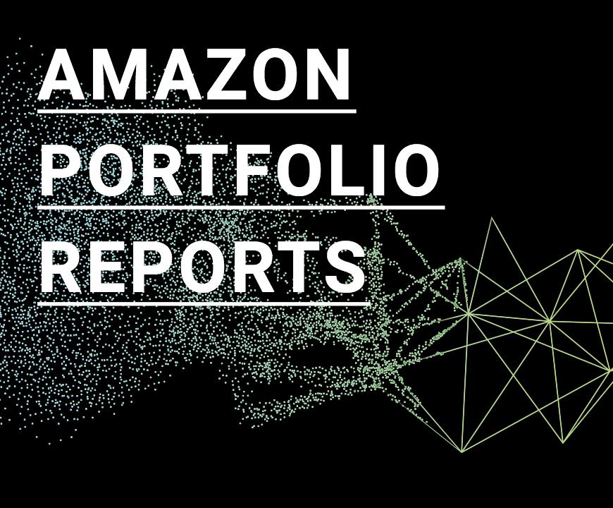 A Feature for the Pros: Amazon Portfolio Reports