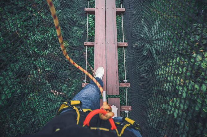 reduce-risk-safety-net-1368px
