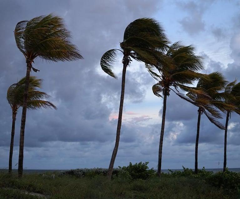 Update: Hurricane Tax Relief