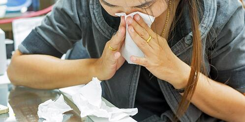 The $9 billion reason you should never show up to work sick   Tampa Employee Benefits