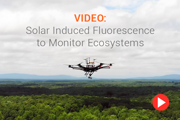 VIDEO: Solar Induced Fluorescence to Monitor Ecosystems