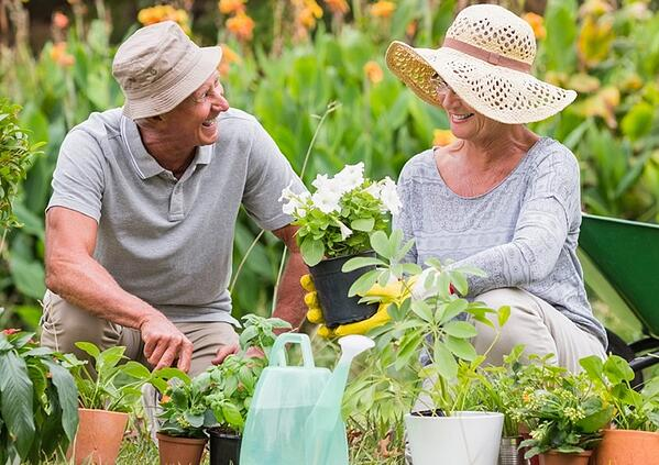 Senior Living Made Easy! Fun Activities for Retirees...