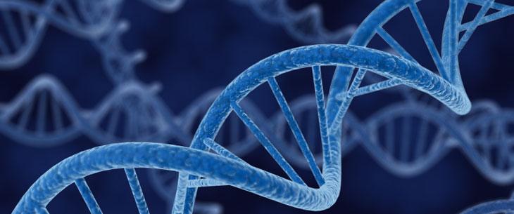 Image result for biology image