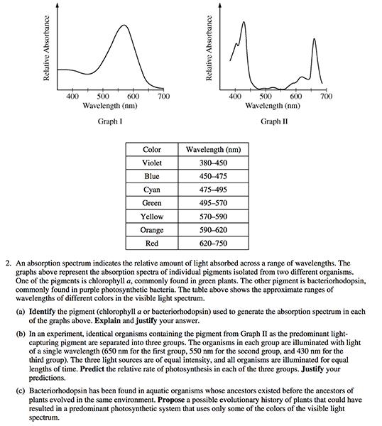 Environemntal science essay format