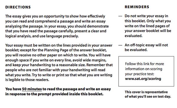 essays instructions