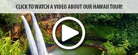 watch--video-hawaii-land-550x220.jpg