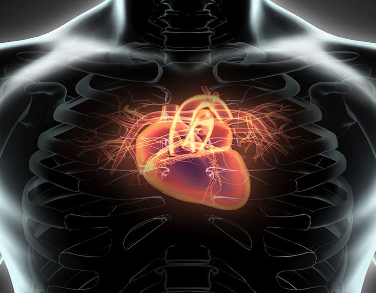 saunas improve the heart