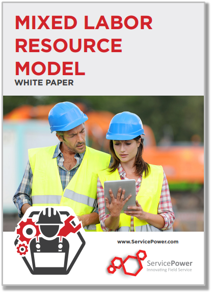 Free White Paper: Mixed Labor Resource Model