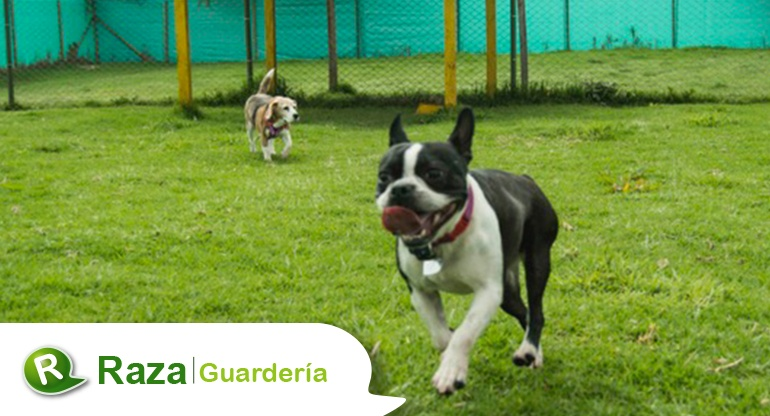 guarderia002.jpg