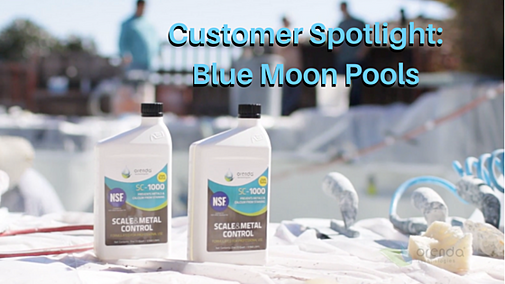 Blue Moon Pools | Orenda Customer Spotlight